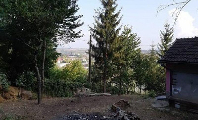 Cerbului, Baia Mare, 2 Rooms Rooms,Casă / Vilă,Vânzare,Cerbului, Baia Mare,3513