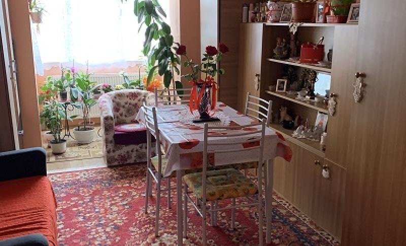 V.Babes, Baia Mare, 2 Rooms Rooms,Apartament 2 camere,Vânzare,V.Babes, Baia Mare,3874